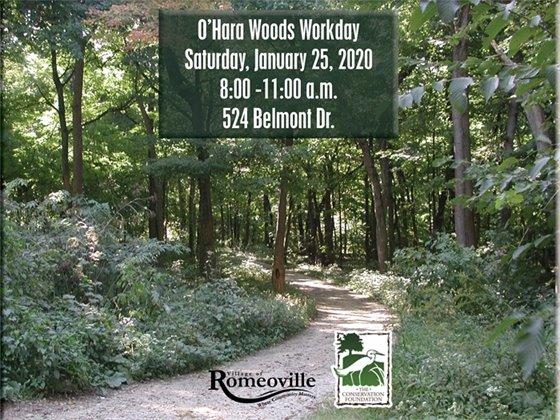 O'Hara Woods Workday
