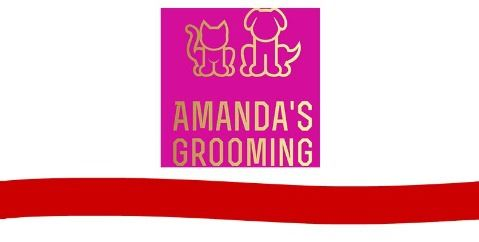Amandas Grooming Ribbon Cutting